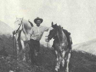 Trischman Knob - Yellowstone - USA