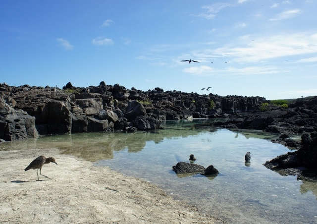 Galapagos Island Hopping Photos