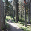 Two Medicine Campsite - Glacier - Montana - USA