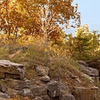 Ruffner Mountain Park
