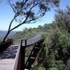 Tree Top Walk Kings Park