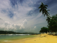Sri Lanka Vacation Package
