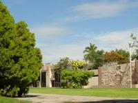 University of Colima