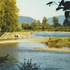 Vedder River Campsite