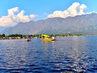 View Dal Lake - Srinagar J&K