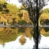View Mendoza