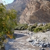 View Stream Through Jomsom - Nepal