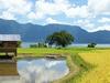 View Sumatra - Indonesia
