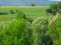 Villány-Siklós Wine Road