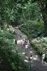 Visitors Feeding Monkeys In The Monkey Forest