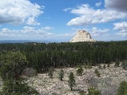 Wildcat Trail - Zion - Utah - USA