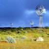 Northern Cape