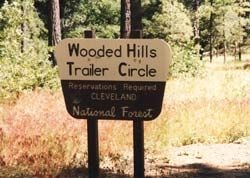 Wooded Hill Group Campground