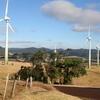 Windy Hill Wind Farm