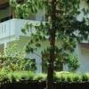 The Estate Windermere