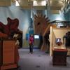 Inside Of Children's Museum Of Manhattan