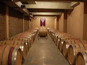 Nashik - Tour the Luxurious Wine Route Photos