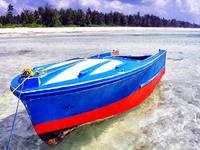 Zanzibar - The Paradise on Earth