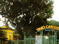 Zoo and Botanical Garden - Ho Chi Minh City