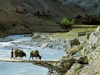 Yapola River