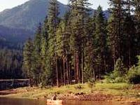 Trinity River Lodge Rv Resort