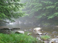 Jacobs Brook Campground