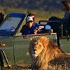 Cape Town 2 Day Budget Safari