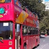 City Sightseeing San Antonio hop on hop of tour