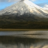 EXCURSION TO THE COTOPAXI NATIONAL PARK & HACIENDA