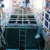 Glass bottom boat excursion from Sharm