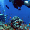 Half Day intro Diving in Hurghada