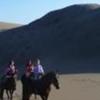 Horseback Riding with Beach BBQ