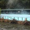 Puyehue Hot Spring Tour, Private
