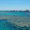 Snorkeling trip to Mahmya Island from Hurghada,