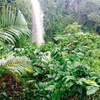 A little  paradise in Vietnam