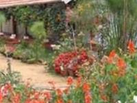 Eco Friendly Homestay