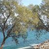 Greek Hospitality in Cretan nature