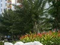 Nice Apartment in Da Nang City