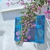 Purple Flower Villa