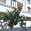 Suite in San Juan de Alicante