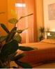 B&B Four Rooms