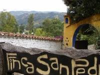 Finca San Pedro