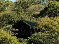 Eagle Tented Lodge and Spa Etosha