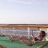 M/S Sherry Boat Luxor-Aswan 4 nights Cruise Monday-Friday