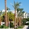 Royal Rojana Sharm