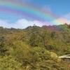 Cloudforest Lodge