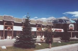 Maligne Lodge