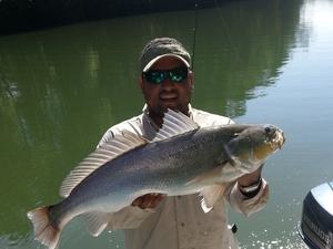 Fishing Day Trip at Montijos Gulf