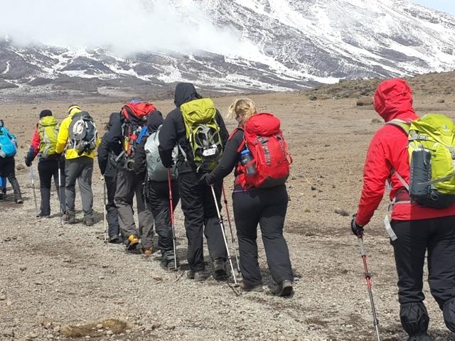 Lemosho Route Climb Kilimanjaro with Accommodation Photos