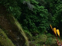 Tortuguero Tour Pacuare River Rafting 7 Days
